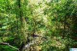 Poplar Springs Trail - Photo 18