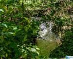 Poplar Springs Trail - Photo 19