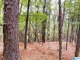 Oak Tree Drive - Photo 11