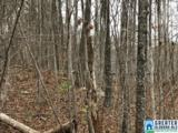 8587 Woodview Ln - Photo 6