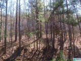 7 Rock Creek Co Rd 4312 - Photo 1