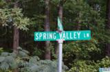 01 Spring Valley Ln - Photo 3