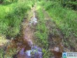 0 Sanie Road - Photo 20