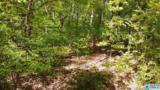 0001 Shady Grove Ln - Photo 1