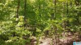 0001 Shady Grove Ln - Photo 6