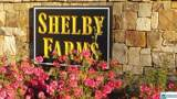 804 Shelby Farms Cir - Photo 10
