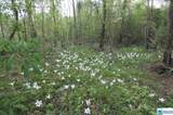 6300 Co Rd 160 - Photo 4