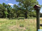 2770 Co Rd 11 - Photo 45