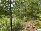 Paint Creek Overlook - Photo 9