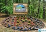 1102 Camellia Ridge Dr - Photo 6