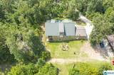 1234 Co Rd 46 - Photo 9