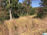 338 Co Rd 810 - Photo 13