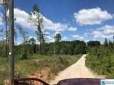 22.28 acres Co Rd 214 - Photo 3