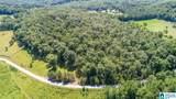 Poplar Springs Trail - Photo 2