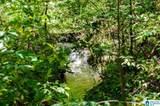 Poplar Springs Trail - Photo 4