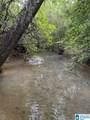 Bama Rock Garden Road - Photo 3