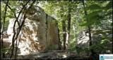4446 Village Green Way - Photo 47