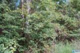 26 Acres Old Shocco Rd - Photo 5