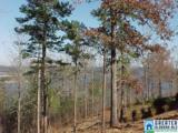 LOT # 20 Overlook Dr - Photo 7