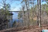 Lot 150 Co Rd 804 - Photo 5