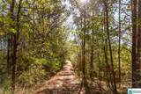4251 Co Rd 10 - Photo 20