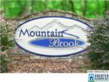 2 Mountain Brook Dr - Photo 1