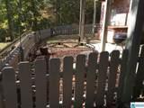 3622 Timber Oak Cir - Photo 36