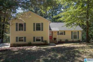 3263 Yellowhammer Dr, Irondale, AL 35210 (MLS #774768) :: The Mega Agent Real Estate Team at RE/MAX Advantage