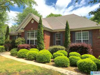 924 Shelby Forest Way, Chelsea, AL 35043 (MLS #781331) :: The Mega Agent Real Estate Team at RE/MAX Advantage