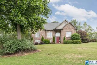 8536 Carrington Lake Crest, Trussville, AL 35173 (MLS #784377) :: The Mega Agent Real Estate Team at RE/MAX Advantage