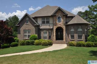 314 Grande View Terr, Alabaster, AL 35007 (MLS #784800) :: The Mega Agent Real Estate Team at RE/MAX Advantage