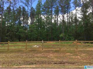 2184 Hwy 336 #20, Chelsea, AL 35043 (MLS #785032) :: The Mega Agent Real Estate Team at RE/MAX Advantage