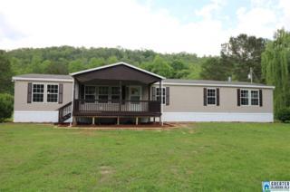 1028 Mount Gilead Rd, Jacksonville, AL 36265 (MLS #785178) :: Brik Realty