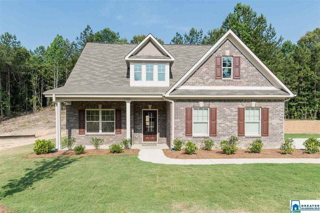 613 White Tail Run, Chelsea, AL 35043 (MLS #840804) :: Josh Vernon Group