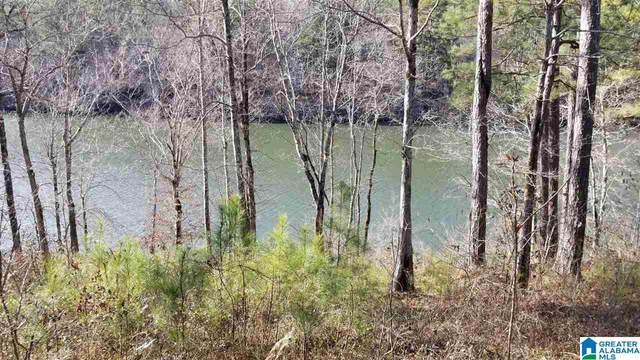 Lot 34 Paint Creek Overlook Lot-034 - Lake , Sylacauga, AL 35151 (MLS #887098) :: Kellie Drozdowicz Group