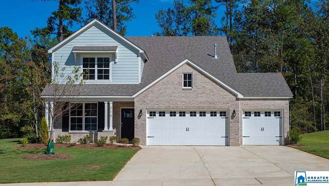 213 Rock Terrace Cir, Helena, AL 35022 (MLS #853882) :: Brik Realty