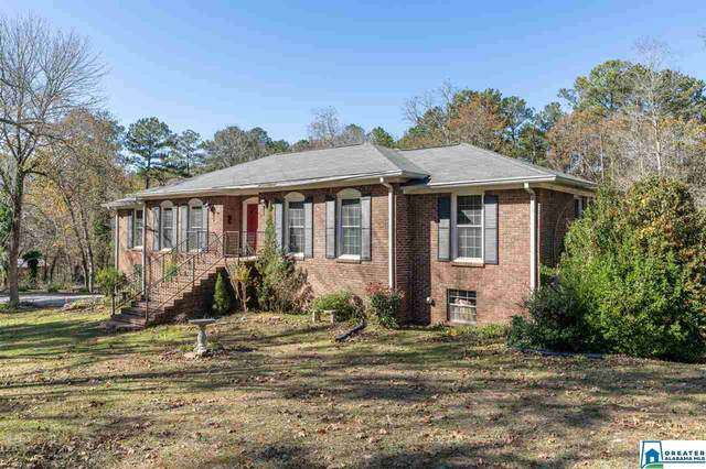 905 Valley Trl, Warrior, AL 35180 (MLS #1270292) :: LocAL Realty