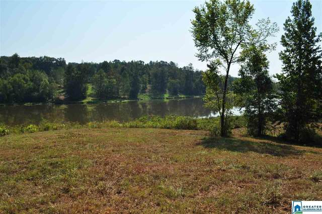 0 North Lake Dr 10 Acres, Valley Grande, AL 36701 (MLS #1270503) :: Sargent McDonald Team