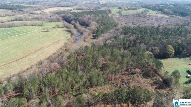 0 Co Rd 457 42 Acres, Woodland, AL 36280 (MLS #1270633) :: Gusty Gulas Group