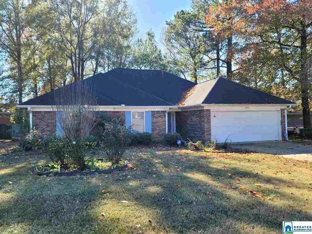 141326 Dearing Downs Dr, Tuscaloosa, AL 35405 (MLS #1270699) :: Gusty Gulas Group