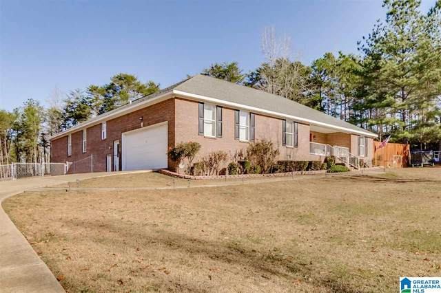 10530 Mallard Trl, Cottondale, AL 35453 (MLS #1272227) :: Lux Home Group