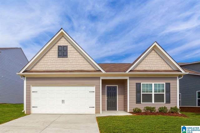 500 Clover Cir, Springville, AL 35146 (MLS #1272504) :: Josh Vernon Group