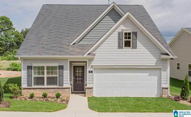 125 Wilson Way, Lincoln, AL 35096 (MLS #1272625) :: Lux Home Group