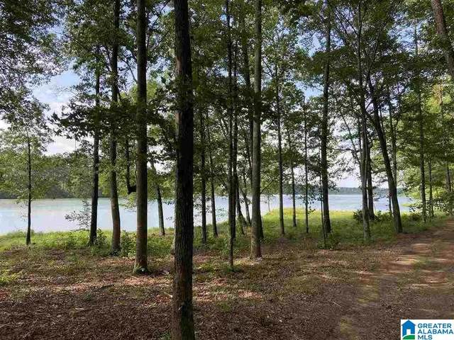 Saunders Bridge Road 21/22, Sterrett, AL 35147 (MLS #1272782) :: Howard Whatley