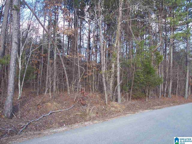 004 Dripping Rock Rd #4, Piedmont, AL 36272 (MLS #1273020) :: LIST Birmingham