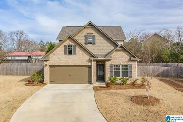 6604 Rice Cir, Bessemer, AL 35022 (MLS #1273200) :: Bentley Drozdowicz Group