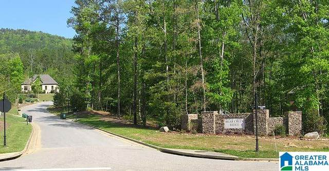 Morningview Cove #38, Chelsea, AL 35147 (MLS #1273363) :: Josh Vernon Group
