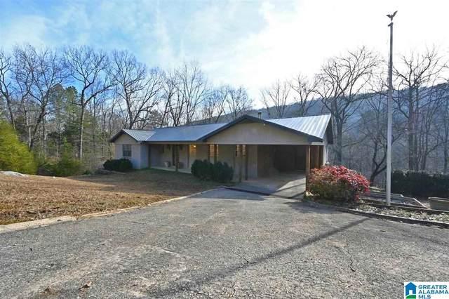 732 Mill Creek Rd, Warrior, AL 35180 (MLS #1273386) :: LIST Birmingham