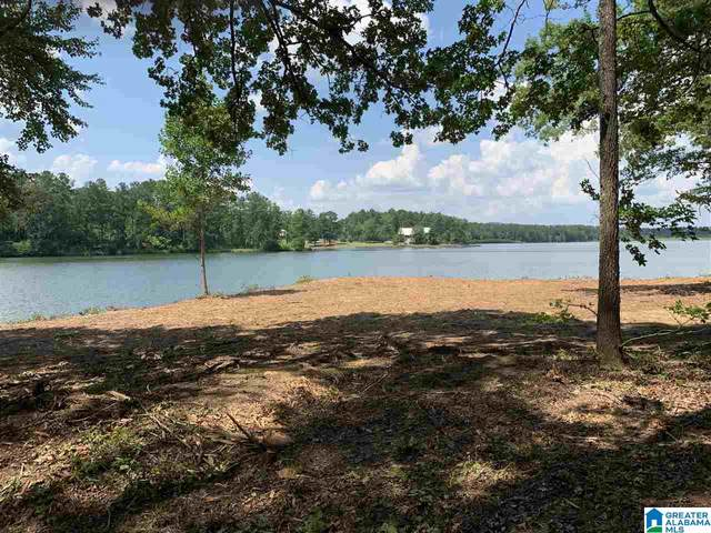 Lot 23 Saunders Bridge Road #23, Sterrett, AL 35147 (MLS #1273503) :: Howard Whatley