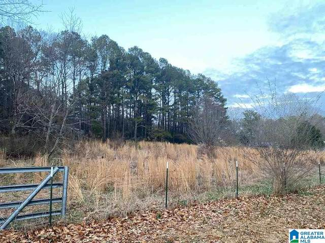 Lot 30 Chickasaw St Lot 30, Springville, AL 35146 (MLS #1273609) :: Bailey Real Estate Group
